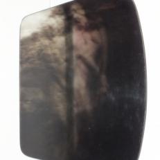 DSCF5461