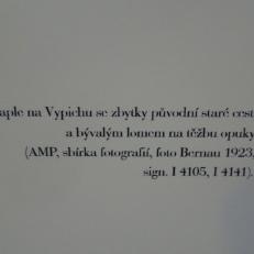 DSC05465